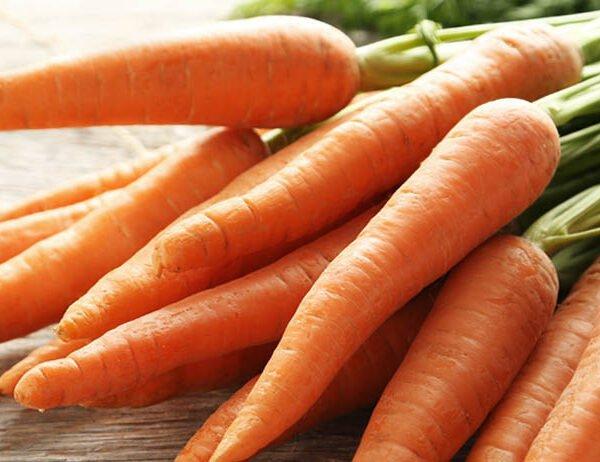 bledina-arroz-cenoura